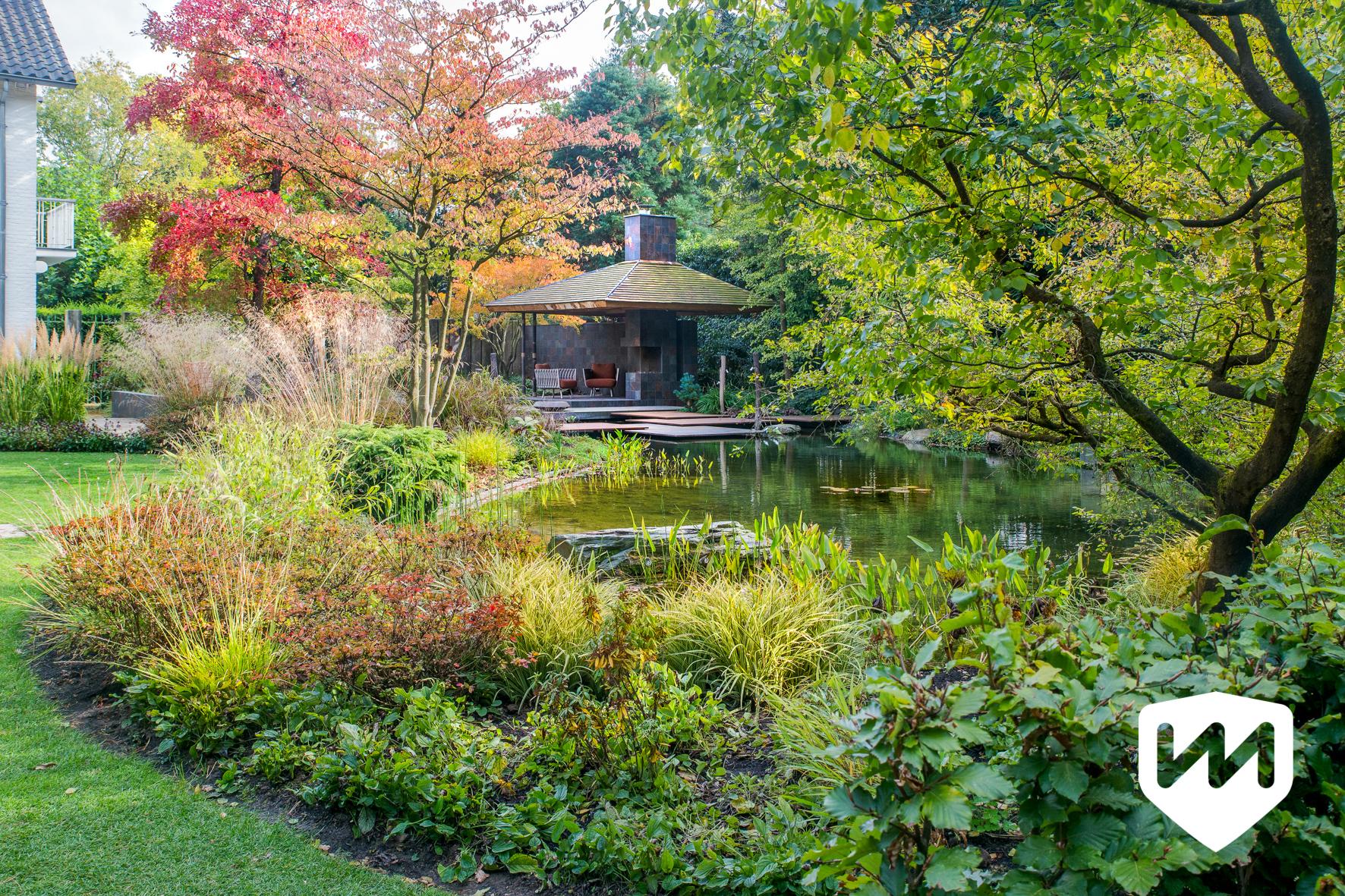 Japanese water garden winner sgd award 2019 van mierlo tuinen